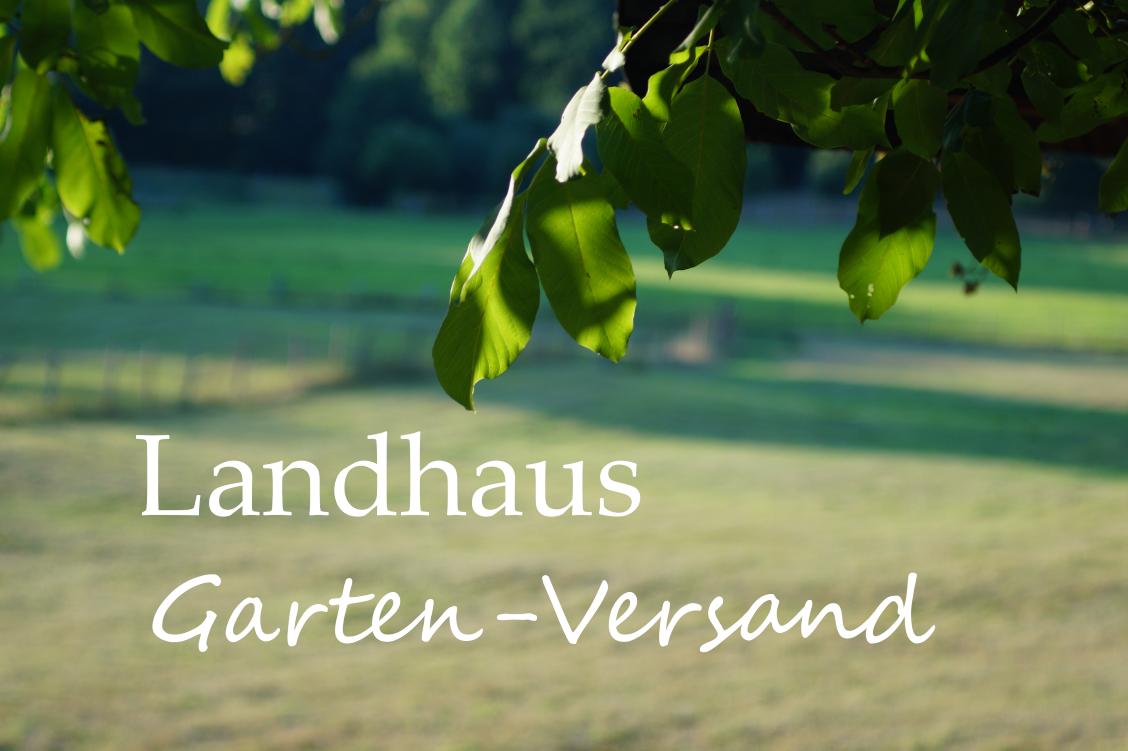 landhaus-BildQCAciqpsfCB3S