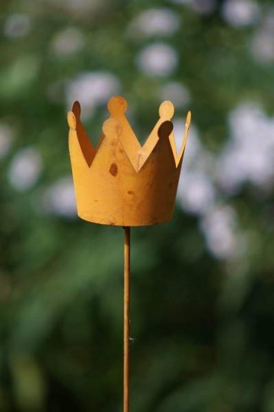 stecker krone