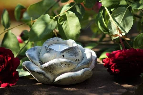 rose für teelicht