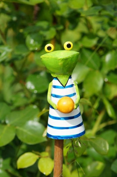 zaunhocker frosch